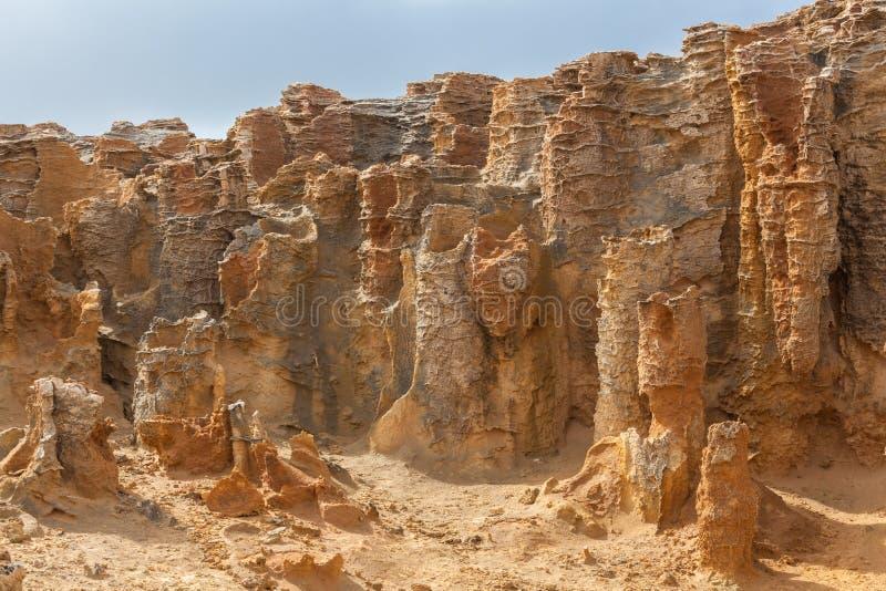 De ongebruikelijke close-up van rotsvormingen bij Van angst verstijfd Bos, Kaap Bridgewater, Australië royalty-vrije stock fotografie