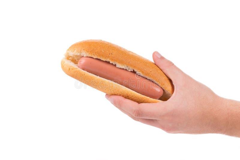 De ongekookte hotdog van de handgreep stock foto