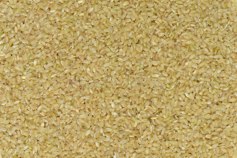 De ongepelde rijst van Japan voor het eten van gezondheid stock fotografie