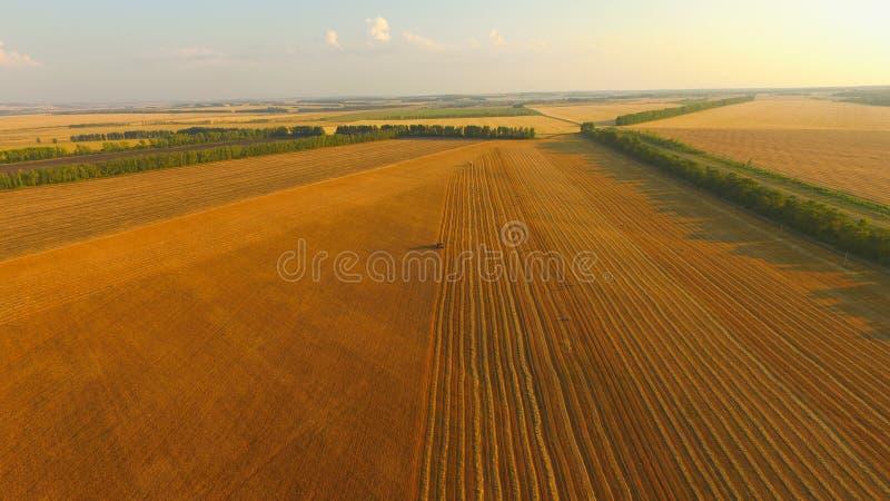 De oogst maaidorser stock afbeeldingen