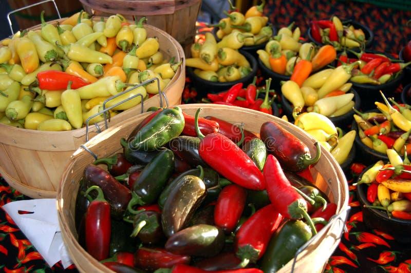De Oogst van Chili stock foto's