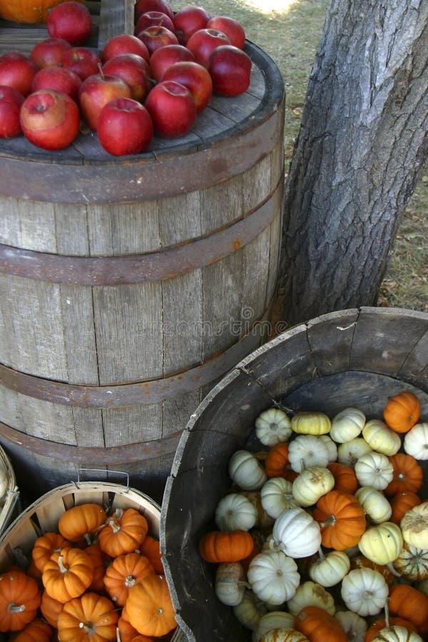 Download De oogst van de herfst stock afbeelding. Afbeelding bestaande uit sinaasappel - 32325