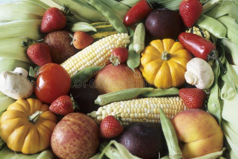 De oogst van de herfst van vruchten en groenten stock fotografie