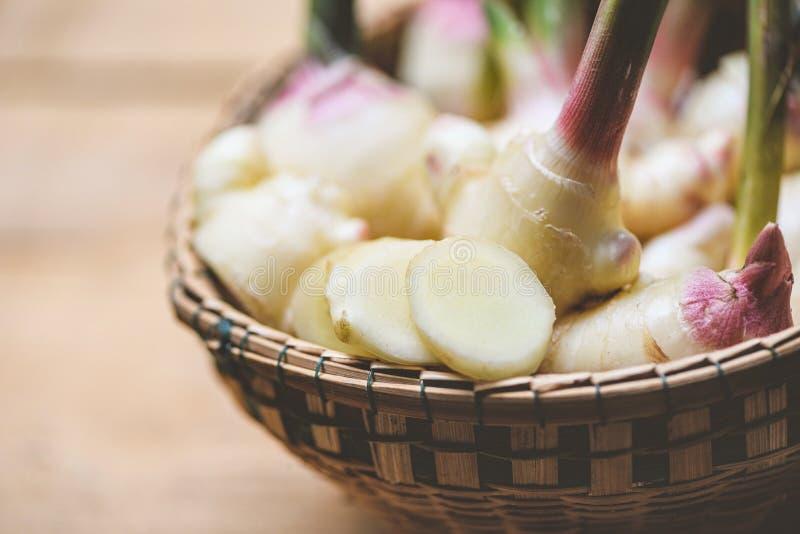 De oogst van de gemberwortel op de mand - Verse jonge gember voor kruid geneeskrachtig natuurlijk en voedsel stock afbeelding
