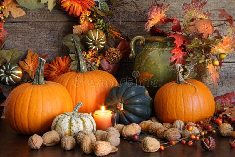 De oogstdecoratie van het stilleven voor Dankzegging stock afbeelding