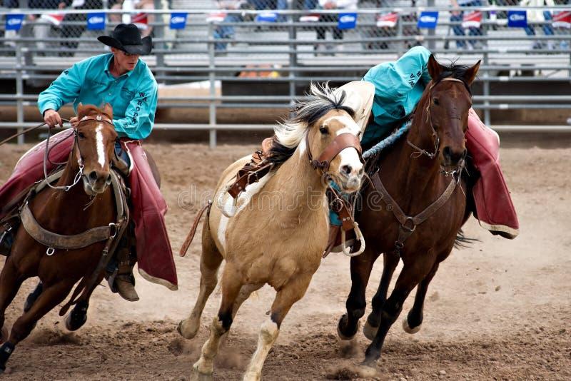De oogstmensen van de rodeo stock foto's