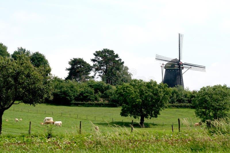 De Op. Sys. el Vrouweheide es un molino harinero anterior en el Hamlet Trintelen fotografía de archivo libre de regalías