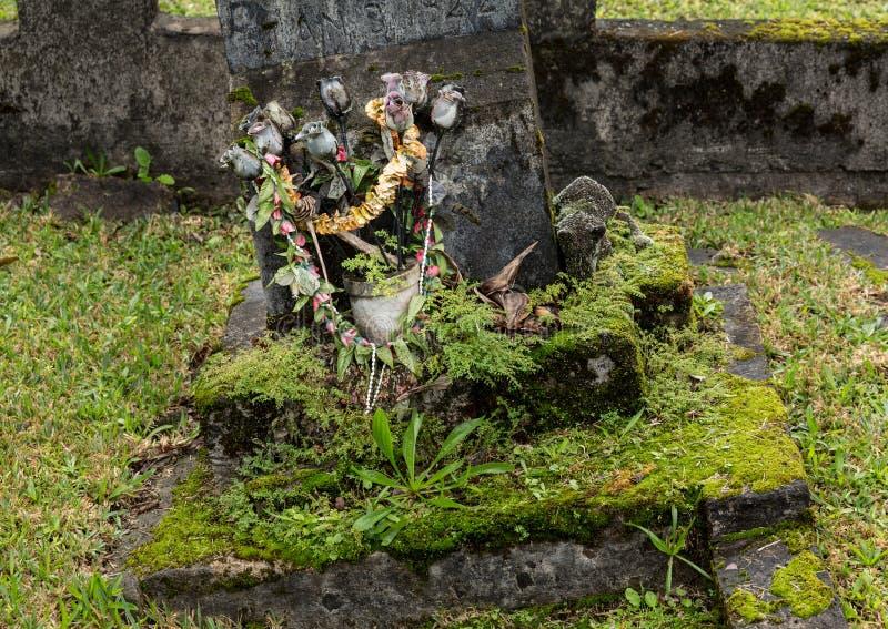 De Opdrachtkerk van Waiolihuiia in Hanalei Kauai stock foto