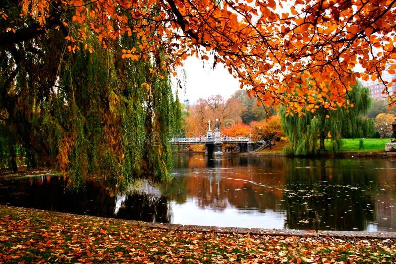 De Openbare Tuin van Boston stock foto's