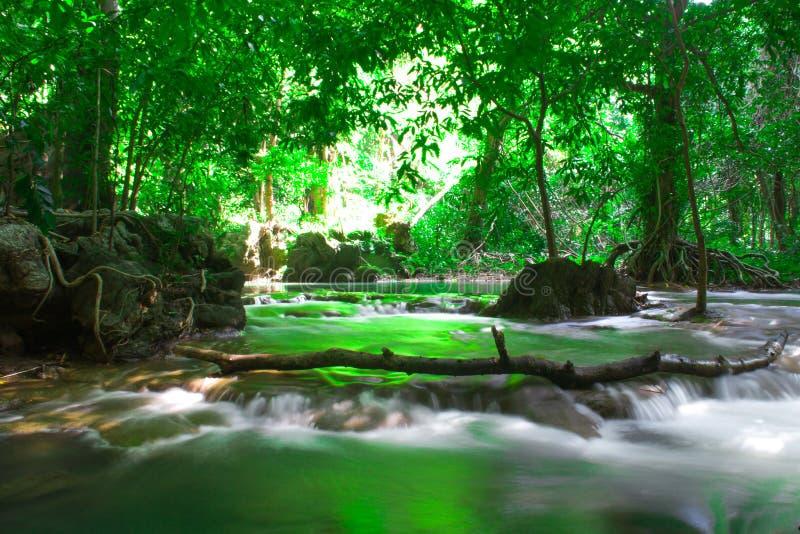De openluchtfotografie van Andamanthailand van waterval in de bosbomen van de regenwildernis, PHUKET, stock afbeelding