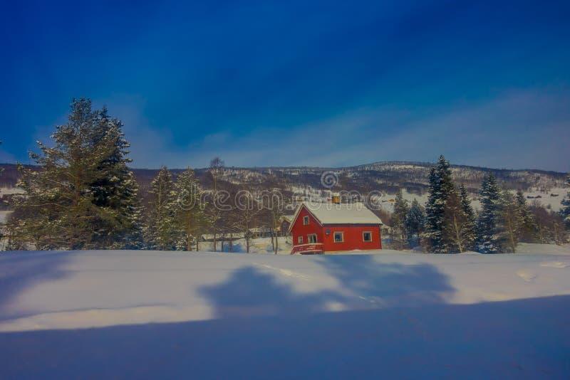 De openluchtmening van rode houten typisch housecovered met sneeuw in het dak in GOL stock fotografie