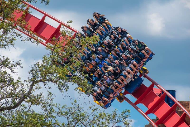 De opgewekte gezichten van mensen die een Sheikra-achtbaan enyoing berijden bij Busch-Park 20 van het Tuinenthema royalty-vrije stock foto