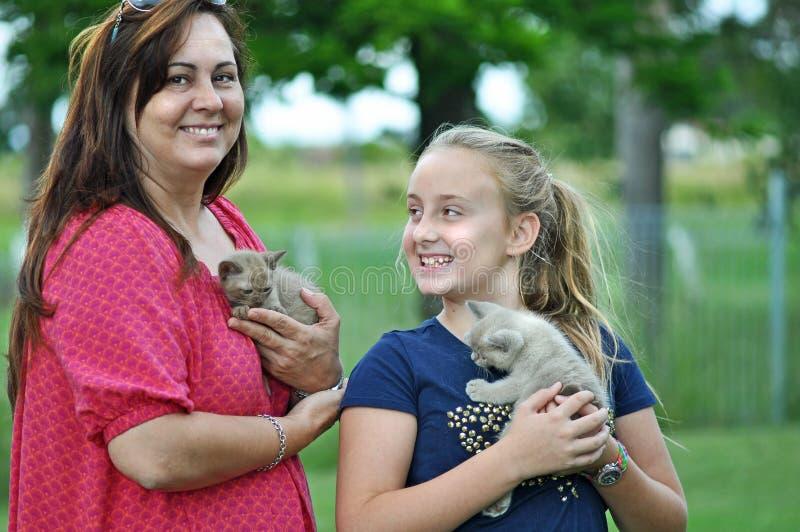 De opgewekte moeder & kindkatjes van het knuffel nieuwe huisdier