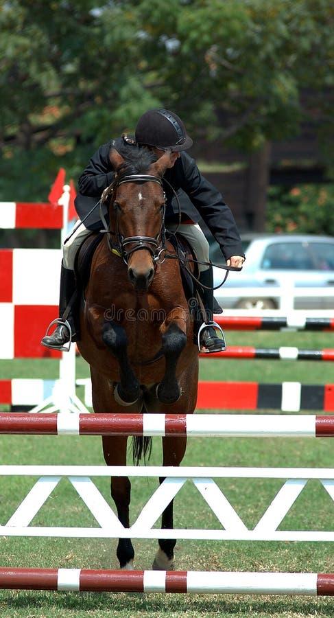 De ophelderingssprong van het paard royalty-vrije stock afbeelding