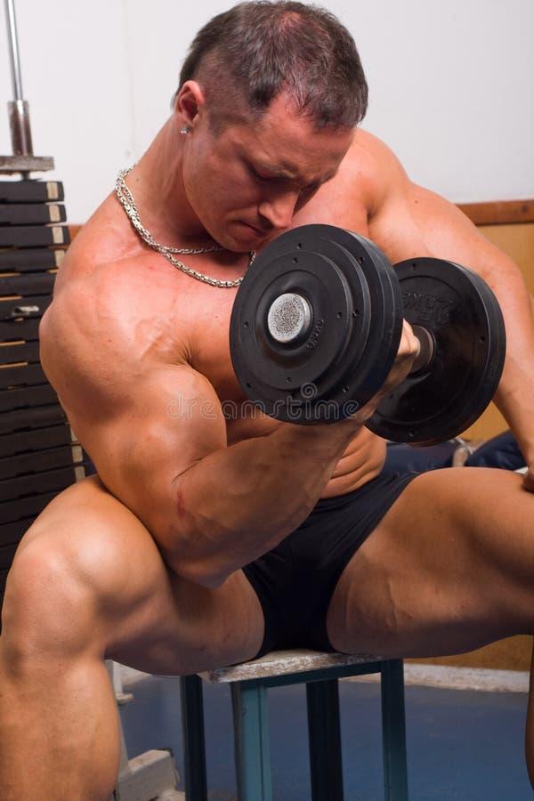De opleiding van de bodybuilder royalty-vrije stock afbeeldingen