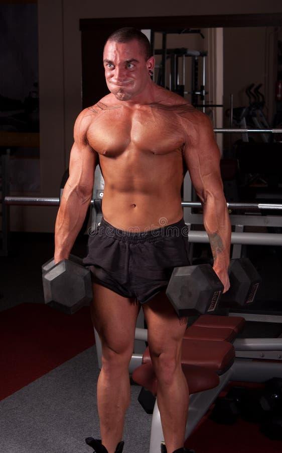De opleiding van de bodybuilder stock fotografie