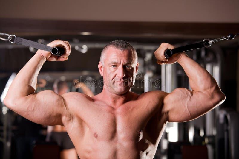 De opleiding van de bodybuilder stock foto