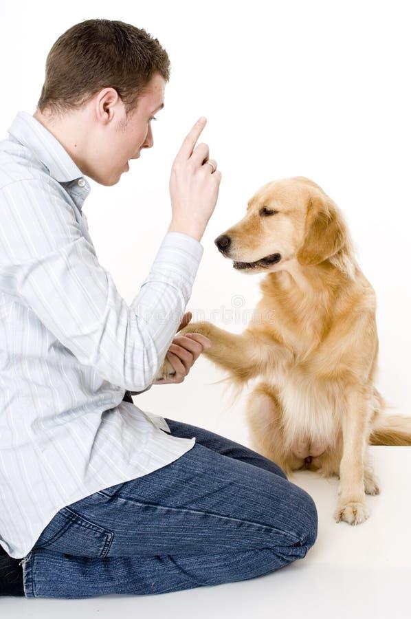 De Opleiding van de hond