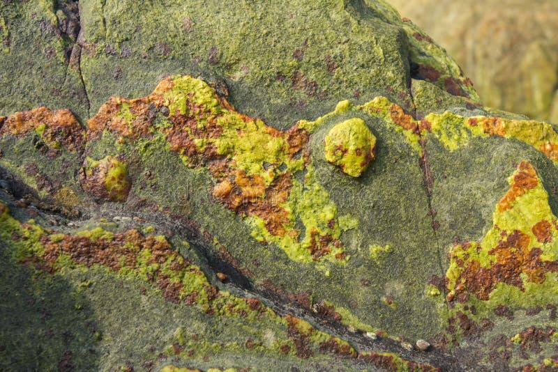 De oppervlakte van een groene steen met bruine vlekken Beschermend patroon voor kleren De Week van de manier royalty-vrije stock afbeelding