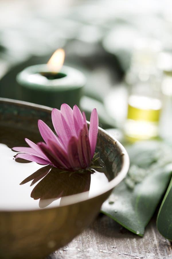 De opstelling van Aromatherapy stock fotografie