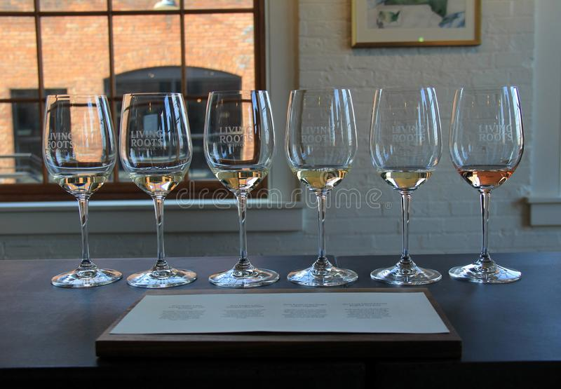 De opstelling van zes wijnglazen in het proeven van ruimte, het Leven Wortelswijnmakerij, Rochester, New York, 2017 royalty-vrije stock foto