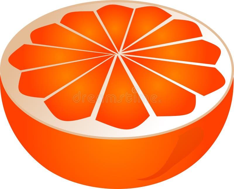 De oranje helft stock illustratie
