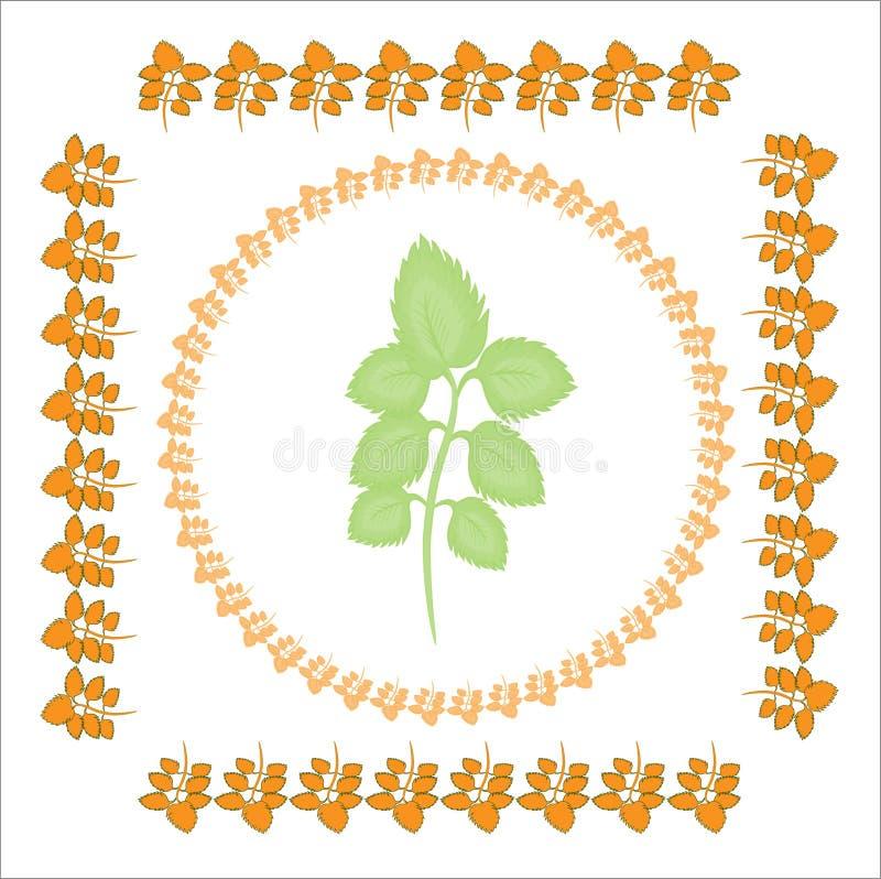 De oranje kaders van netelbladeren zijn vierkant en rond Binnen het kader - groene netel De illustratie op het gouden thema - stock illustratie
