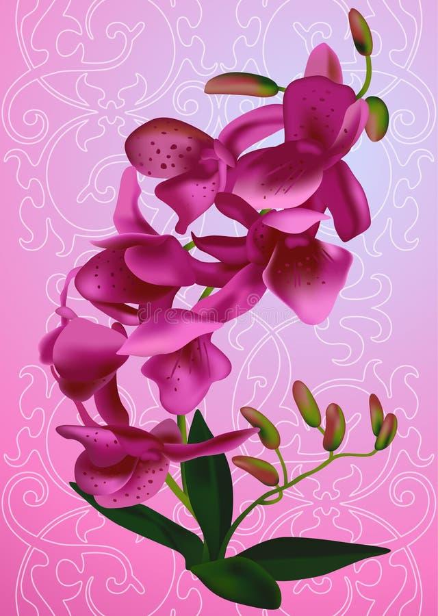 De orchidee van de twijg stock illustratie