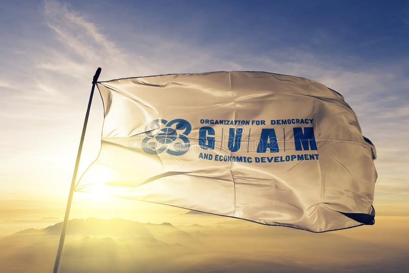 De Organisatie van GUAM voor Democratie en de Economische textiel de doekstructuur die van de Ontwikkelingsvlag op de hoogste zon vector illustratie