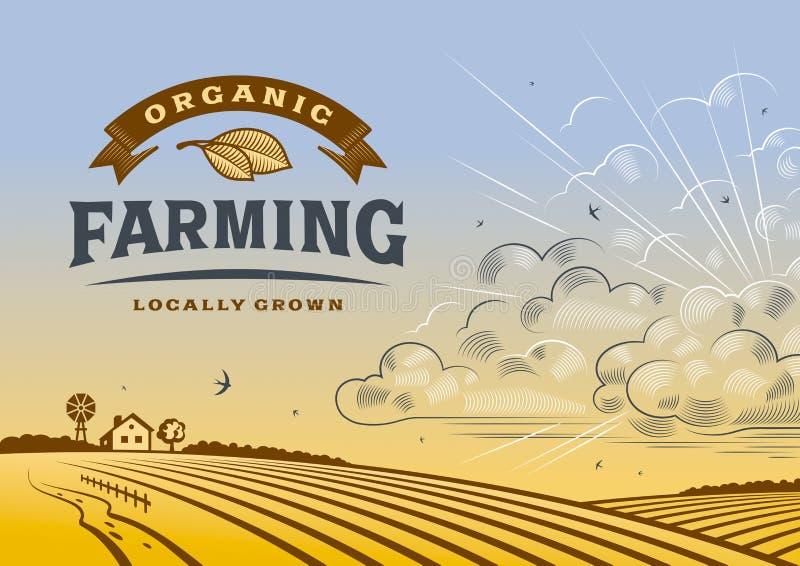 De organische Landbouwlandschap royalty-vrije illustratie
