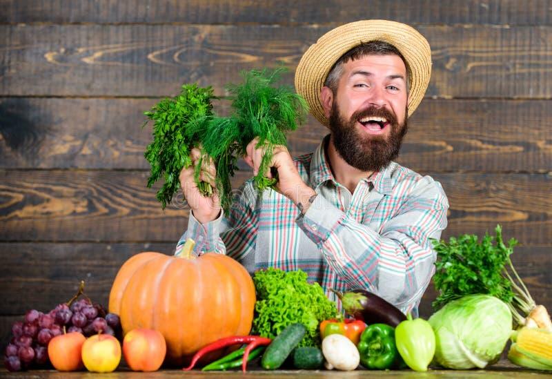 De organische meststoffen maken oogst gezond en rijk De landbouwer met inlandse groenten oogst Organische ongediertebestrijding stock afbeelding