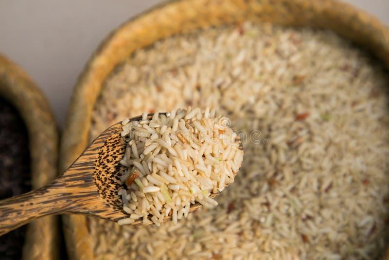 De organische rijst van de browjasmijn en houten lepel royalty-vrije stock fotografie