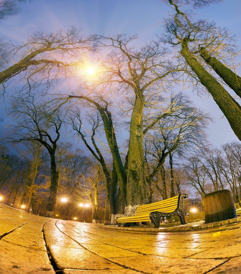 De originele natte straatstenen van de nachtmening stock fotografie