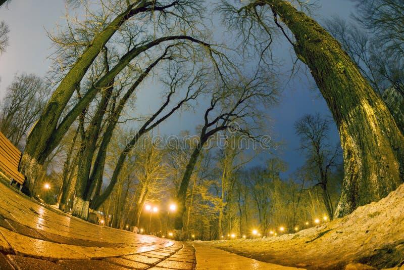 De originele natte straatstenen van de nachtmening stock foto