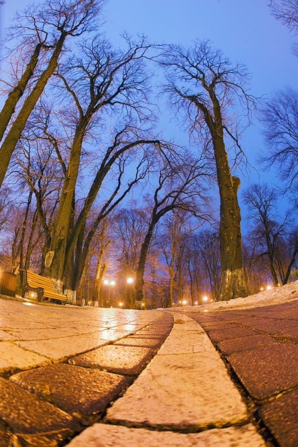 De originele natte straatstenen van de nachtmening stock afbeelding