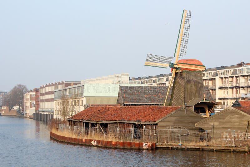 De Otter Amsterdam lizenzfreie stockbilder