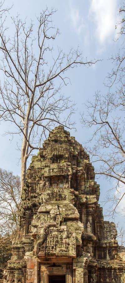 De oude architectuur in de tempel van Ta Prohm, Angkor Thom, Siem oogst, Kambodja royalty-vrije stock fotografie