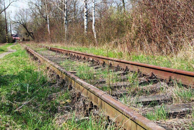 De oude die treinsporen met gras worden behandeld royalty-vrije stock fotografie