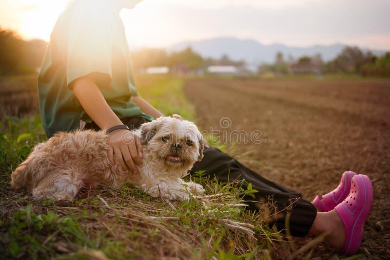 De oude en lelijke hond maar het eigenaarmeisje geeft liefde en gelukkig stock afbeelding