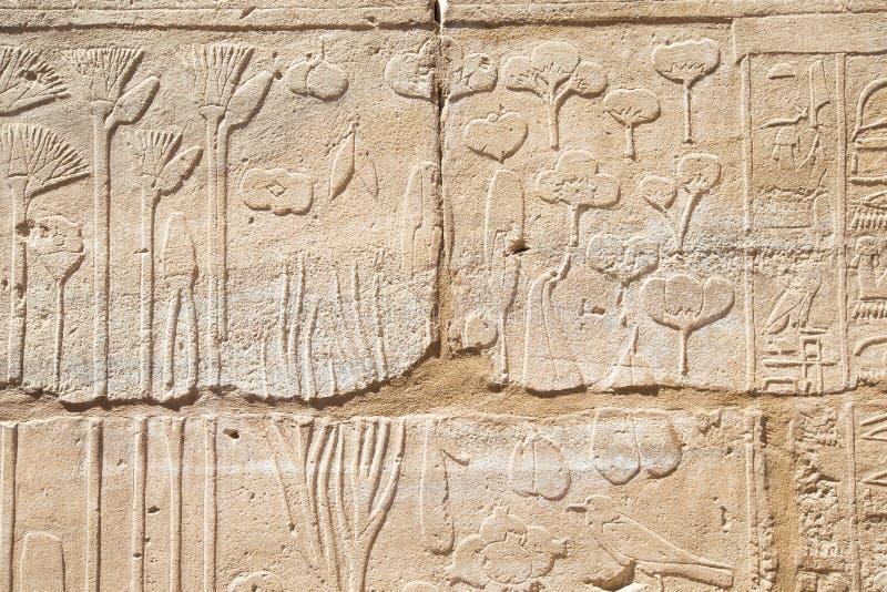De oude gesneden hiërogliefen van Egypte royalty-vrije stock afbeelding
