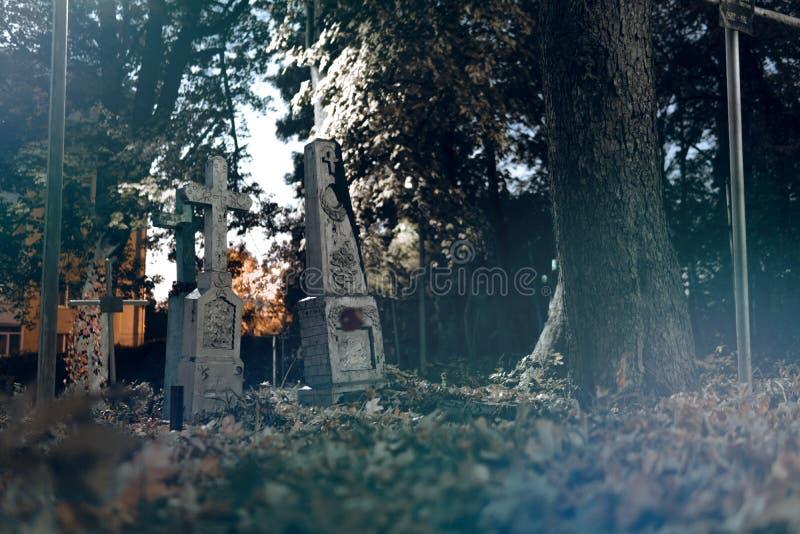 De oude grafstenen ruïneren in autmnbos, begraafplaats in avond, nacht, maan lichte, selectieve nadruk, het conceptontwerp van Ha royalty-vrije stock afbeeldingen