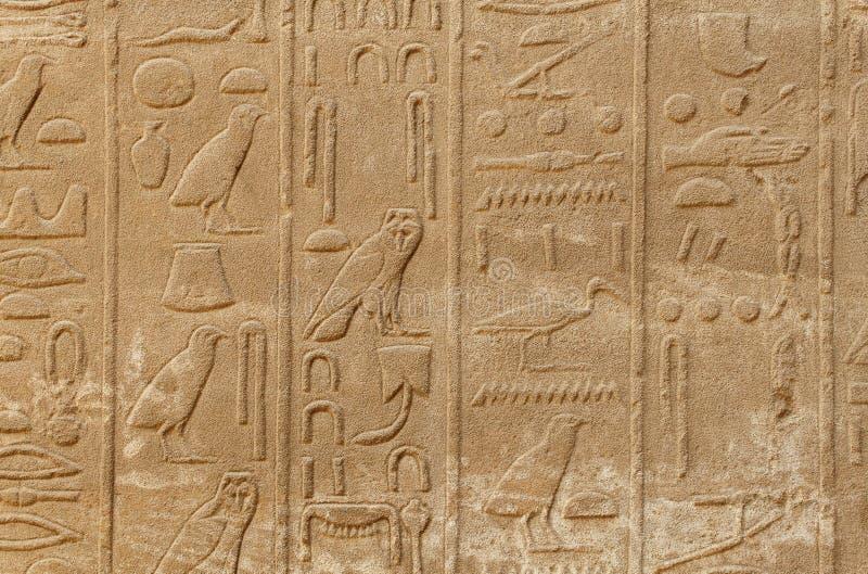 De oude hiërogliefen van Egypte stock afbeelding
