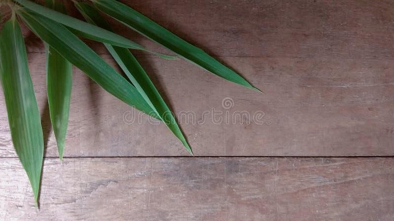 De oude houten achtergrond stock afbeelding