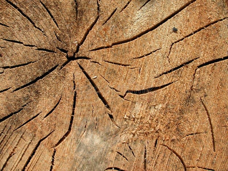 De oude Houten Textuur van de Barsten van de Korrel