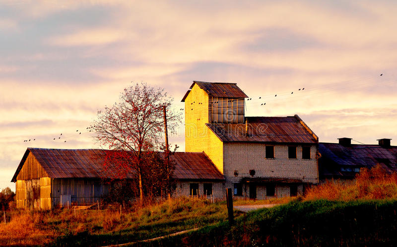 Download De Oude Landbouwbedrijfbouw Stock Foto - Afbeelding bestaande uit ochtend, boom: 54081140
