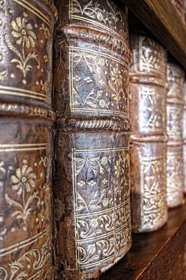 De oude Leer Verbindende Stekels van Boeken op de Plank van de Bibliotheek royalty-vrije stock foto's