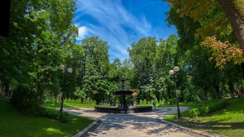 De oude mooie fontein van Kiev in het stadscentrum in Mariin royalty-vrije stock foto's