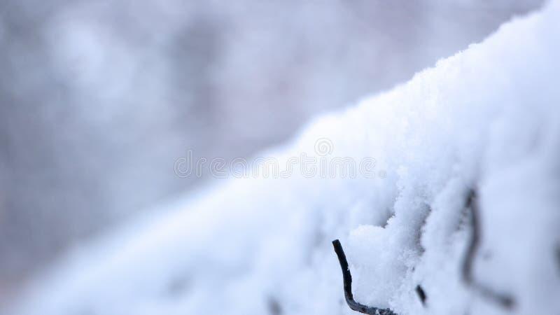 De oude omheining van het metaalnetwerk in de sneeuw op een bewolkte de winterdag stock foto's