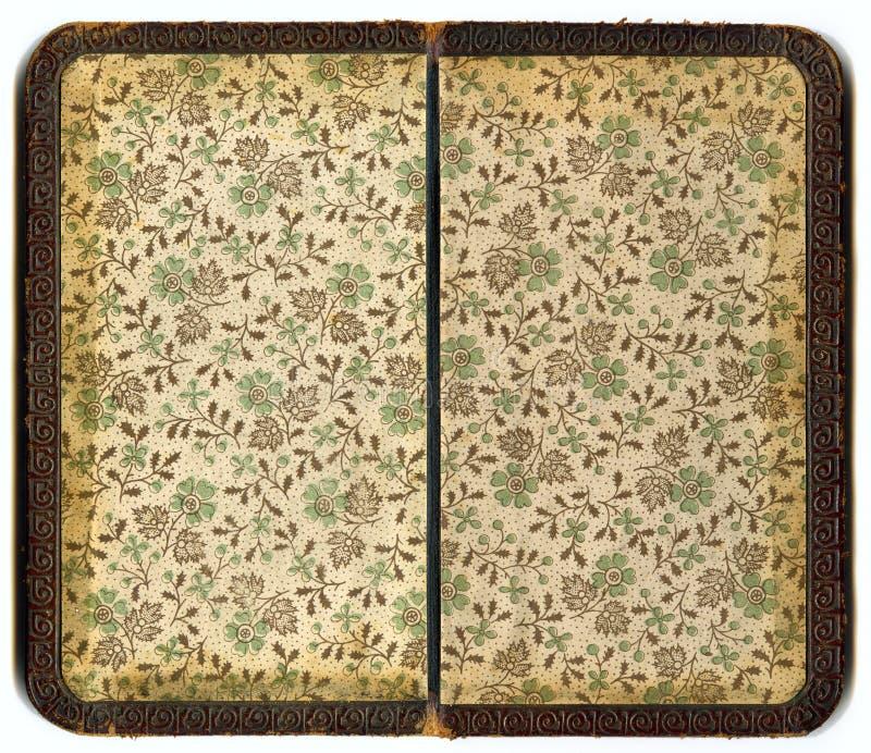 De oude pagina van het Boek royalty-vrije illustratie