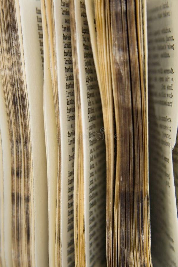De oude Reeks van het Woordenboek royalty-vrije stock afbeeldingen